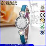 Orologi casuali della vigilanza del quarzo del ODM per le signore (WY-077A)
