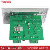 amplificateur blanc de plaque du dans-Mur 15wx2CH/mur avec le port de remplissage aux. de l'entrée USB d'écouteurs d'entrée