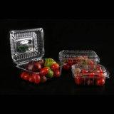 Recipiente plástico plástico afastado hermético de produto comestível de produto comestível