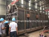 Chaudière organique allumée par charbon personnalisable de porteur de chaleur de série