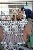 Dientes del cortador de los dígitos binarios de taladro Ds-01 para la plataforma de perforación rotatoria