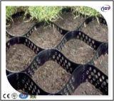 HDPE Steigung-Schutz Geocells