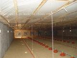 Exaustor montado indicador do ventilador da exploração avícola do telhado da parede de Foshan