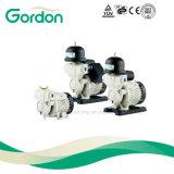 Automatische selbstansaugende Wasser-Pumpe des VerstärkerGa101 mit Messingantreiber