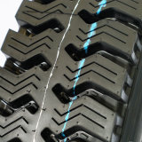 ISO и DOT патенты все стальные радиальных шин 8.25r16