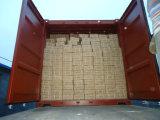 Clavo galvanizado de pulido principal del material para techos de la pista del paraguas de la buena calidad