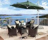 /Rattan ao ar livre/cadeira & tabela do Rattan mobília do jardim/pátio/hotel ajustadas (HS 1106C & HS 7207DT)