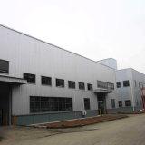 Edificio con estructura de acero de pared de cristal de la cortina para el alquiler de sala de exposiciones