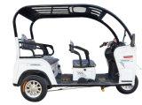 Motor eléctrico de adultos de passageiros de três rodas triciclo motociclo