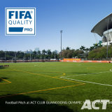 gioco del calcio di 50mm la FIFA, Soocer, campo da giuoco, erba artificiale del tappeto erboso