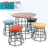 Tavolino da salotto di legno stabilito di disegno moderno del tavolino da salotto
