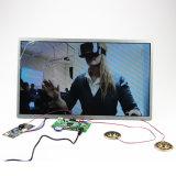 Un video 1280X800 12V delle 15 di pollice dell'affissione a cristalli liquidi componenti del comitato