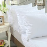Waterproof Zipperedの90GSM Knitted Fabric Laminated TPU Pillow Protector