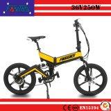 Fantas-fiets Vikingen 002 Goedkope Elektrische Fiets