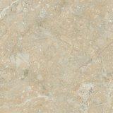De Rustieke Vloer van het Porselein van de Kleur van Begie en de Tegel van de Muur met Matte Afwerking