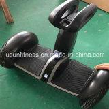 Bester und preiswerter elektrischer Roller für Erwachseneelektrischen Chariot