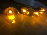 Edison Solar lámpara de la cadena muestra gratuita de LED de exterior nuevo Cuento de Navidad de la luz de la energía para la decoración Pathway Home Road Villa Jardín Patio Factory vender a bajo precio
