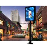 Водонепроницаемый светодиодный индикатор рекламы на улице постоянного освещения в салоне