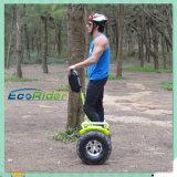 Motorino diritto elettrico dell'equilibrio di auto dell'adulto 2017 con una grande rotella da 21 pollice