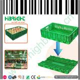 Het vouwen van Plastic Bakken voor Vruchten en Groenten