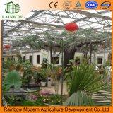 生態学的な観光の庭の温室