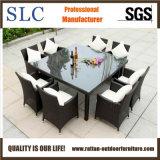Vimine pranzante di vimini della mobilia che pranza mobilia (SC-A7270)