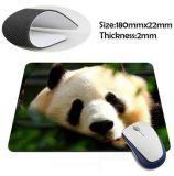 Diseño Natural Eco goma duradera ratón de la computadora de ratón para regalo