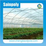 Preiswertester heißer Verkauf Sainpoly landwirtschaftliches/Handelsplastikgewächshaus