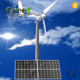 système hybride du vent 10kw solaire