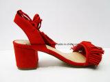 Zapatos atractivos de la sandalia de señora Fashion Middle Chunky Heel para el partido