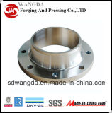 Pl Carboned Forged Plate Flange En1092-1 Pn6 Type01
