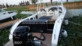 Console centrale soudée 8.2m tous les bateaux de pêche en Aluminium Ce certifié