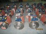 Stの単一フェーズの交流発電機2kwへの30kw
