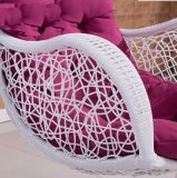 Swing Hanging Chair / Balançoire Swing Chair / Swing Chair