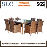 Wicker обедая Wicker мебели обедая мебель (SC-A7270)