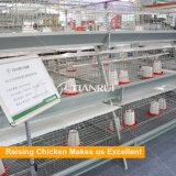 الصين آليّة طفلة يحبس كتكوت دواجن [فرم قويبمنت] سعر