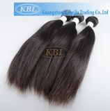 Extensões naturais malaias cheias do cabelo da cutícula 100% da qualidade superior