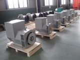 200kVA Brushless Generator de In drie stadia van China - Type Stamford (JDG274H)