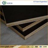 1220&2440mm cola fenólica /Película Negra enfrenta la madera contrachapada / Junta de construcción