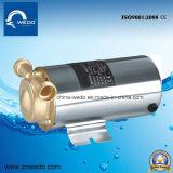 Qualität 120W steuern Förderpumpe für Warmwasserbereiter von China Wedo automatisch an