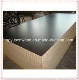 Contrachapado / Material de construcción / Construcción Contrachapado