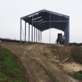 De poort Loodsen van het Metaal van de Structuur van het Staal van het Frame Lichte van Professionele Fabrikant