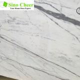 Lastra di pietra naturale di marmo bianca di nuovi disegni da vendere