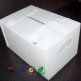 Boîte en plastique ridée par Coroplast de pp Corflute Correx pour les fruits et la nourriture