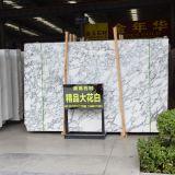 Prezzo di marmo bianco cava di pietra Polished della lastra dell'alta in India