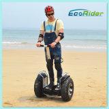 Leistungs-elektrisches Motorrad, Selbstbalancierender Roller, elektrischer Chariot-Ausgleich-Roller