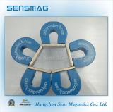 Magnete permanente personalizzato del ferro di cavallo AlNiCo5