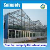 コマーシャルのための極度の白いガラス温室