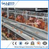 Jaula/aves de corral soldadas casa del pollo del huevo de la capa del acoplamiento de alambre del diseño de China