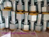 Ssのステンレス鋼22611の女性ホースフィッティングのひだが付く一致のBspの糸の油圧ゴム製管付属品の管のフェルールの付属品
